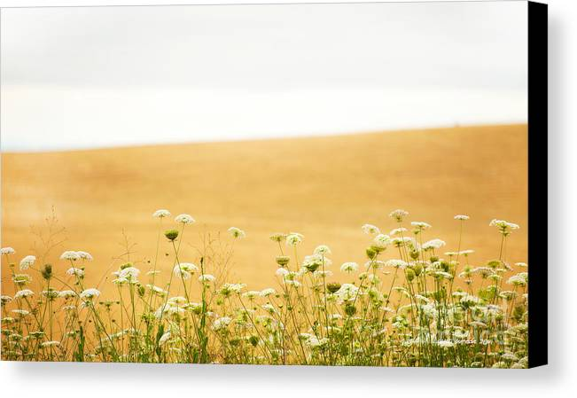 Grassy Hill Canvas Print featuring the photograph Run With Me Through A Field Of Wild Flowers by Artist and Photographer Laura Wrede
