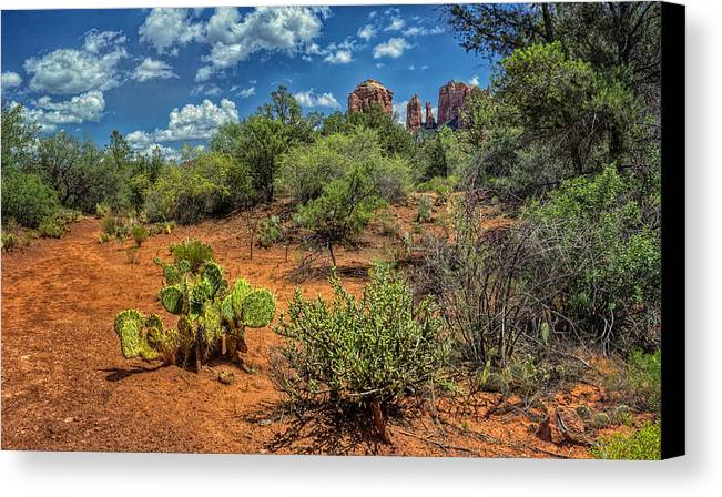Hdr Panoramic Canvas Print featuring the photograph Oak Creek Trail by Stephen Campbell