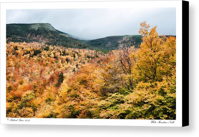 Autumn Canvas Print featuring the photograph White Mountain's Gold by Richard Bean