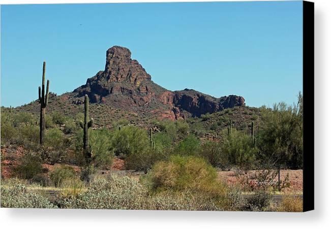 Arizona Canvas Print featuring the photograph Arizona Scenic Vi by Suzanne Gaff