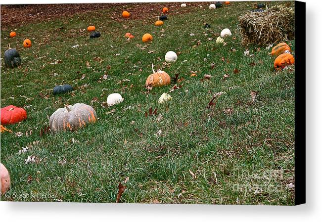 Outdoors Canvas Print featuring the photograph Pumpkins by Susan Herber