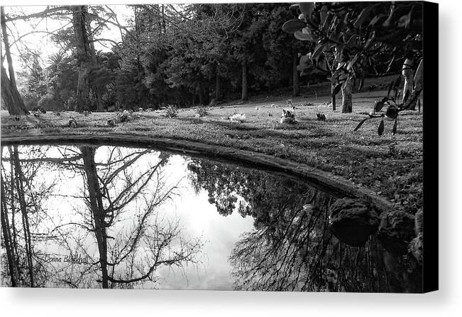 Water Canvas Print featuring the photograph At Peace by Donna Blackhall
