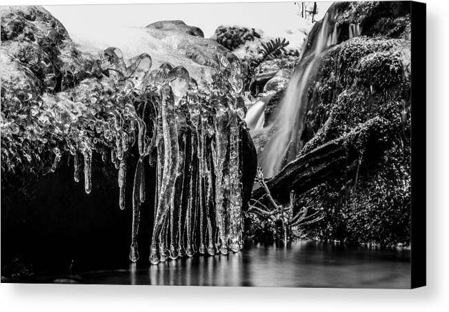 Allegheny National Forest Allegany State Park Canvas Print featuring the photograph Frozen In Time by David Galenski