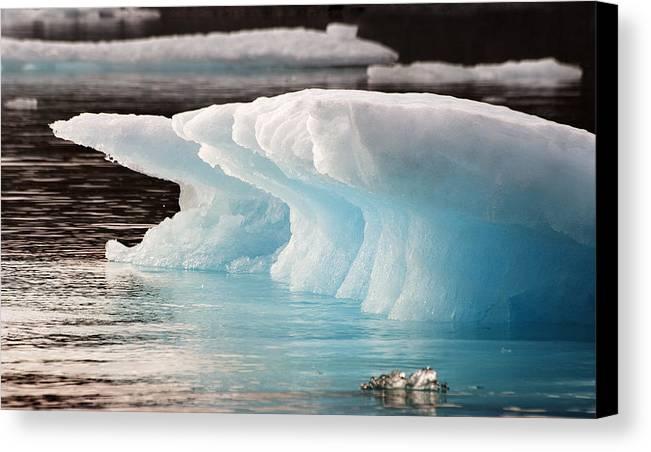 Iceberg Canvas Print featuring the photograph Ice Bears by Elisabeth Van Eyken