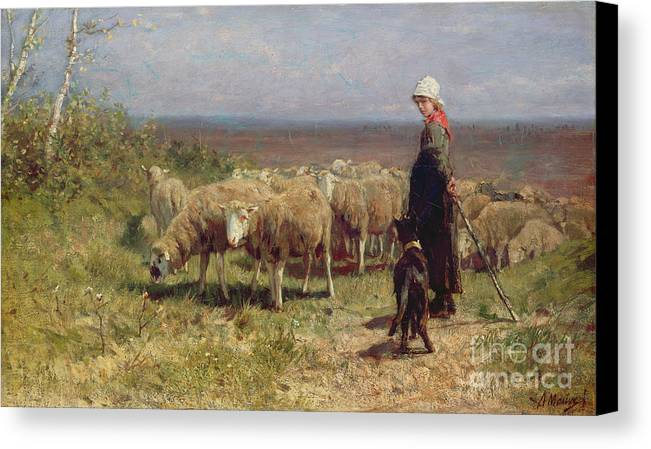 Shepherdess Canvas Print featuring the painting Shepherdess by Anton Mauve