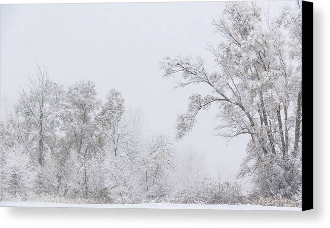 Hainesville Canvas Print featuring the photograph Snowing In A Starbucks Parking Lot by Joni Eskridge