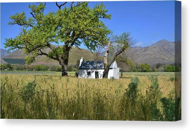 Landscape; Little; Farm House; Oak Tree; Grass; Rural; Mountains; Franschhoek; South Africa; Sky; Blue; Green; White; Background; Farmland; Tree; Plants; Canvas Print featuring the photograph Little Farm House by Werner Lehmann