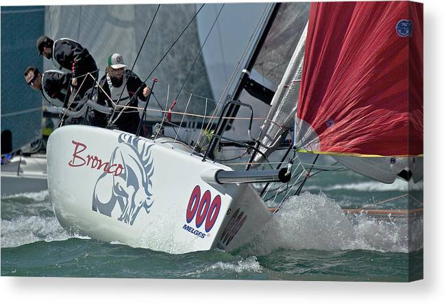 San Francisco Canvas Print featuring the photograph Melges Regatta by Steven Lapkin