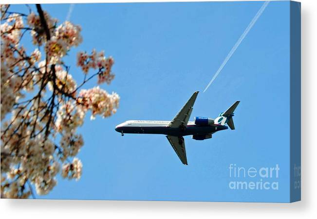 Tran Canvas Print featuring the photograph Air Tran Airlines by Jost Houk