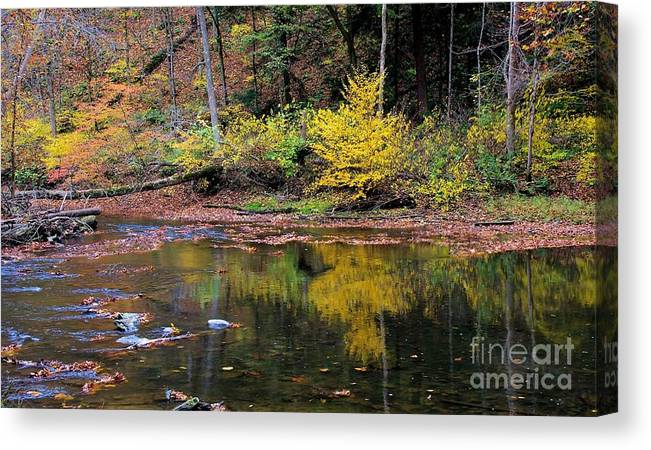 Reflect Canvas Print featuring the photograph Yellow Reflections by Patti Smith