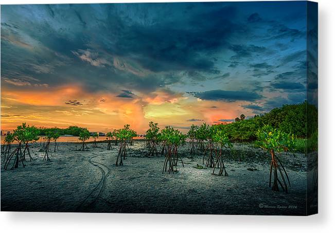 Florida Canvas Print featuring the photograph The Endless Trail by Marvin Spates