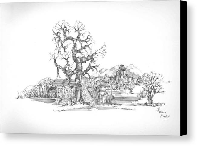 Landscape Canvas Print featuring the drawing Tree And Some Rocks by Padamvir Singh