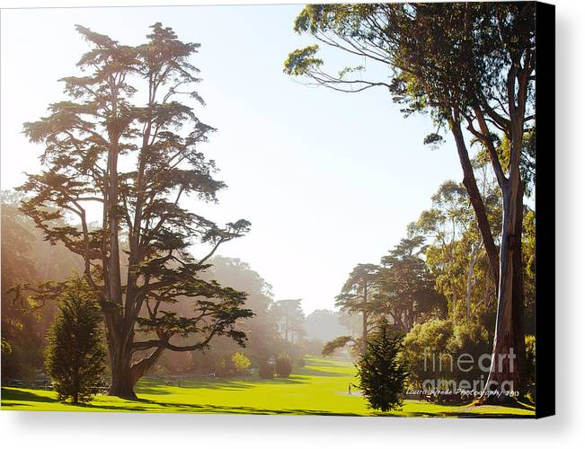 San Francisco Images Canvas Print featuring the photograph Golden Gate Park San Francisco by Artist and Photographer Laura Wrede