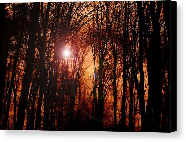 Sunrise Canvas Print featuring the photograph Good Day Sunshine by Mary Anne Williams