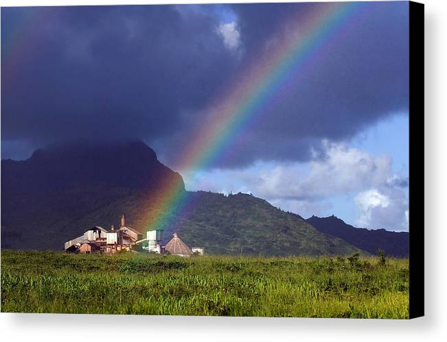 Koloa Mill Canvas Print featuring the photograph Koloa Mill by Nick Galante