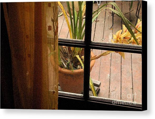 Flower Canvas Print featuring the photograph Past The Curtain by Michael Ziegler