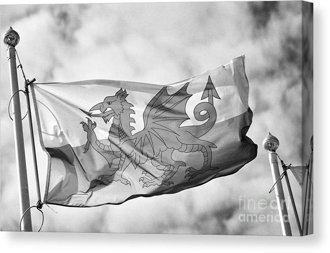 Red Canvas Print featuring the photograph The Red Dragon National Flag Of Wales by Joe Fox