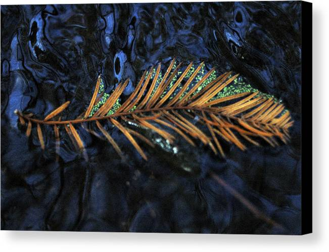 Water Canvas Print featuring the photograph Light Music by Deborah Gallaway