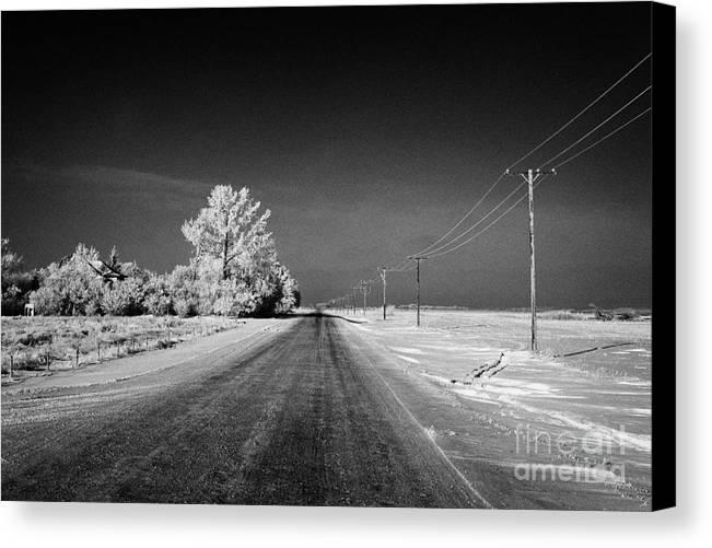 Salt Canvas Print featuring the photograph salt and grit covered rural small road in Forget Saskatchewan Canada by Joe Fox