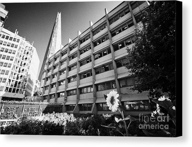 Shard Canvas Print featuring the photograph the shard building towering over melior street community garden London England UK by Joe Fox