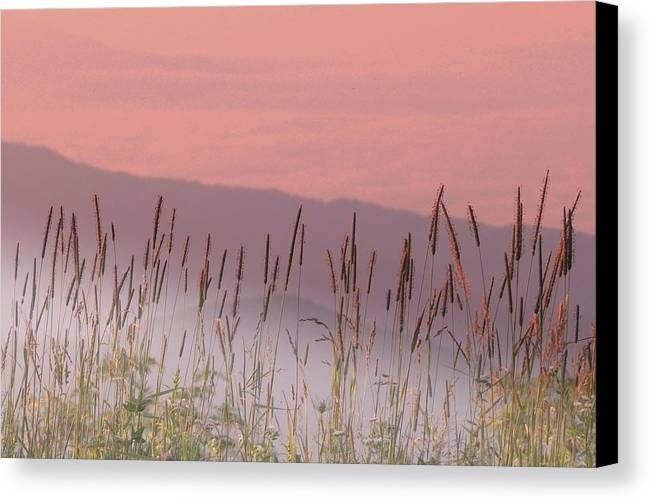 Smokies Canvas Print featuring the photograph Clingmans Dome by Al Swasey