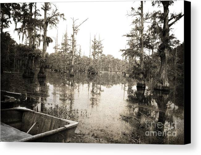 Swamp Canvas Print featuring the photograph Cypress Swamp by Scott Pellegrin