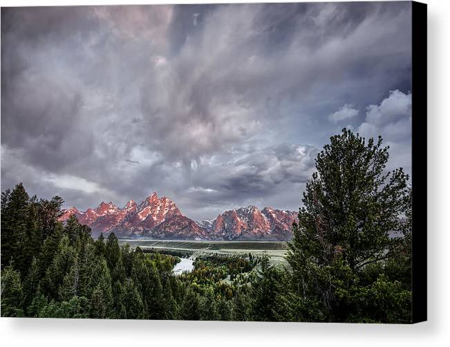 Horizontal Canvas Print featuring the photograph Grand Treeton by Jon Glaser
