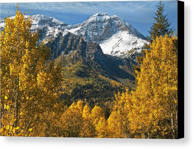 Mount Timpanogos Canvas Print featuring the photograph Mount Timpangos by Douglas Pulsipher