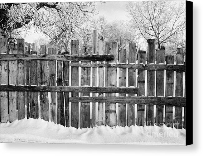 Old Canvas Print featuring the photograph old patched up wooden fence using old bits of wood in snow Forget Saskatchewan Canada by Joe Fox