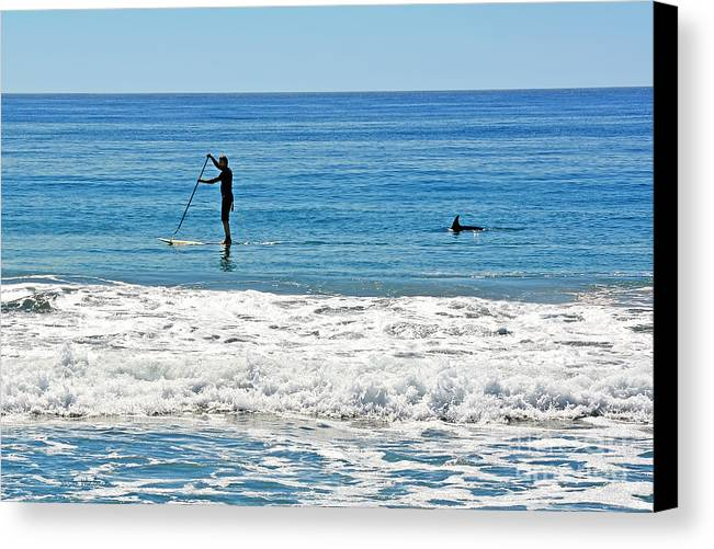 Susan Wiedmann Canvas Print featuring the photograph Paddle Boarder And Dolphin by Susan Wiedmann