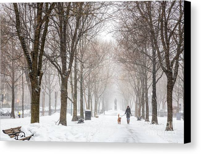 America Canvas Print featuring the photograph Snowy Walk by Susan Cole Kelly