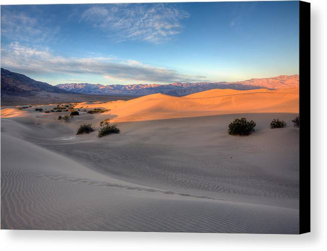 Mesquite Flats Duunes Canvas Print featuring the photograph Sunrise Dunes by Peter Tellone
