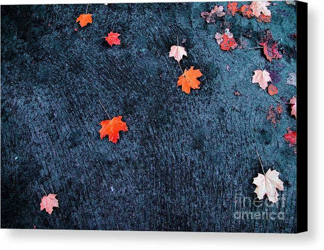 Autumn Canvas Print featuring the photograph About Autumn by Vadim Grabbe
