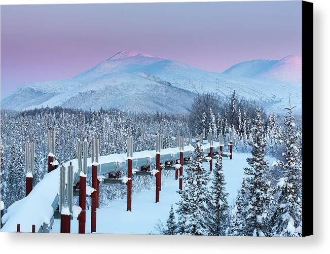Alaska Canvas Print featuring the photograph Arctic Light by Patrick Endres