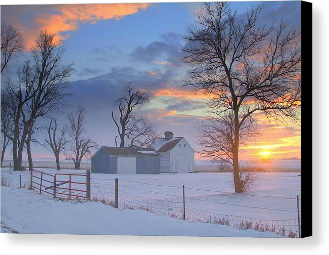 Winter Canvas Print featuring the photograph Eye Candy..winters by Al Swasey