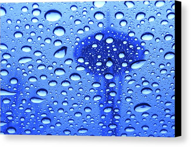 Seattle Canvas Print featuring the photograph Needle In Rain Drops H006 by Yoshiki Nakamura