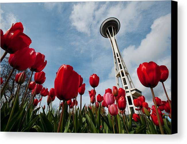 Seattle Canvas Print featuring the photograph Tulips In Seattle H081 by Yoshiki Nakamura