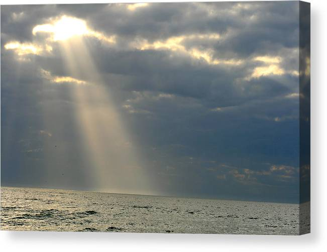Sun Canvas Print featuring the photograph Bright Light by DD Edmison