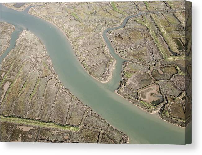 Europe Canvas Print featuring the photograph Oyster Beds, Marennes by Laurent Salomon