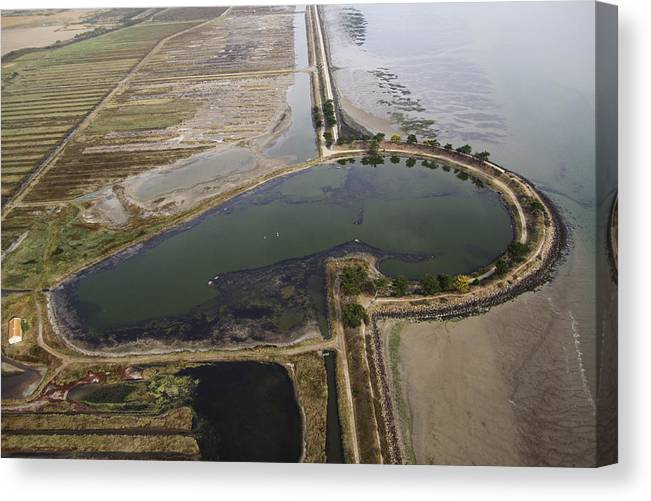 Europe Canvas Print featuring the photograph Pond, Noirmoutier by Laurent Salomon