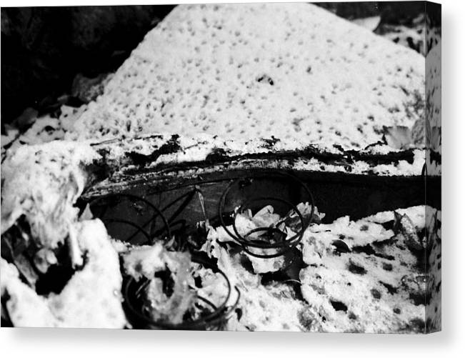 Springs Canvas Print featuring the photograph Time And Neglect by Emilio Maria