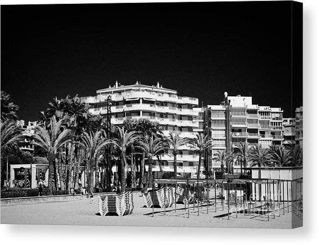 Tree Canvas Print featuring the photograph Tree Lined Seafront Promenade And Beach Salou Catalonia Spain by Joe Fox