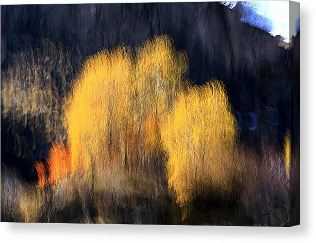 Autumn Canvas Print featuring the photograph Wizard by Robert Shahbazi