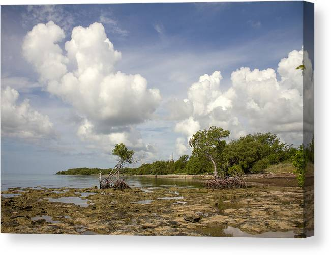 Clouds Canvas Print featuring the photograph Clouds In The Keys 2 by Carol McArdle