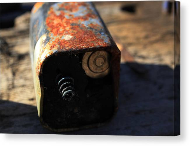 Outdoors Canvas Print featuring the photograph Copper Top by Chris Hung