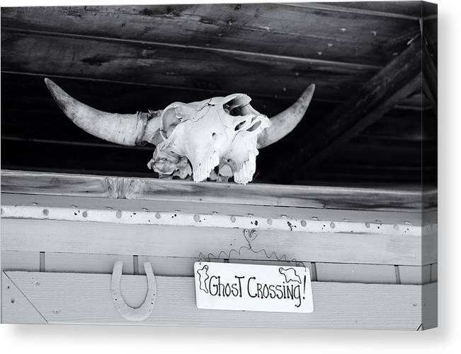 Skull Canvas Print featuring the photograph Dick's Saloon Belmont Nv by Troy Montemayor