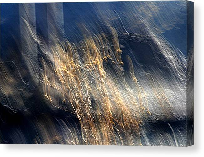 Landscape Canvas Print featuring the photograph Enigma by Robert Shahbazi