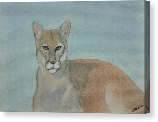 Mountain Lion Canvas Print featuring the painting Mountain Lion - Pastels - Color - 8x12 by B Nelson