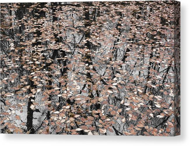 Trees Canvas Print featuring the photograph Trees In The Leaves by Ayesha Lakes