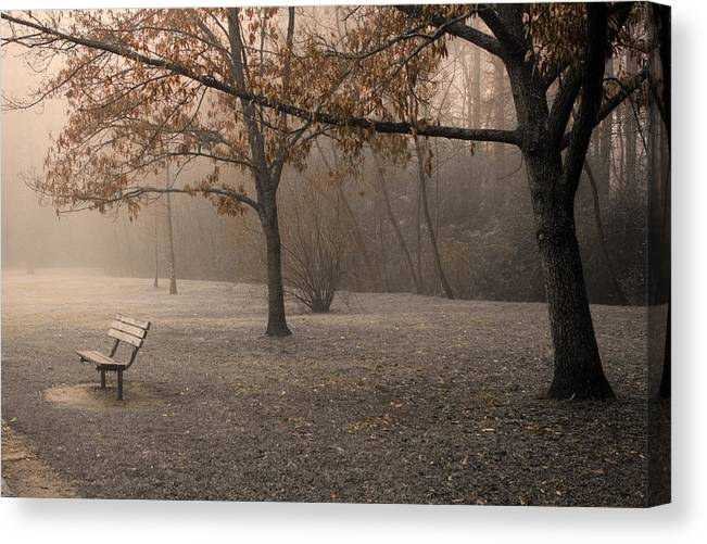 Park Canvas Print featuring the photograph Waiting For God by Ayesha Lakes